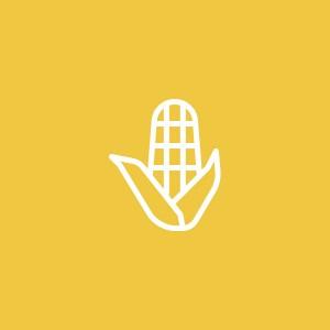 food_bijgerecht